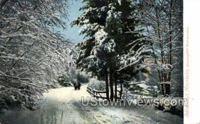 Bloomingdale Road - Adirondack Mts, New York NY Postcard