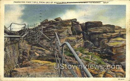 Protected Foot Trail, Whiteface Mountain - Adirondacks, New York NY Postcard