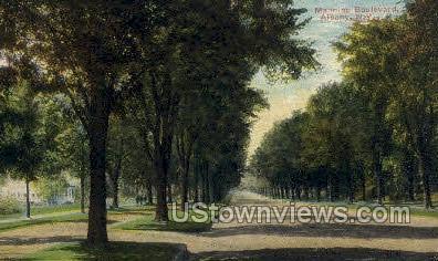 Manning Blvd - Albany, New York NY Postcard