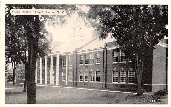 Andes Central School New York Postcard