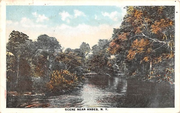 Water View Andes, New York Postcard