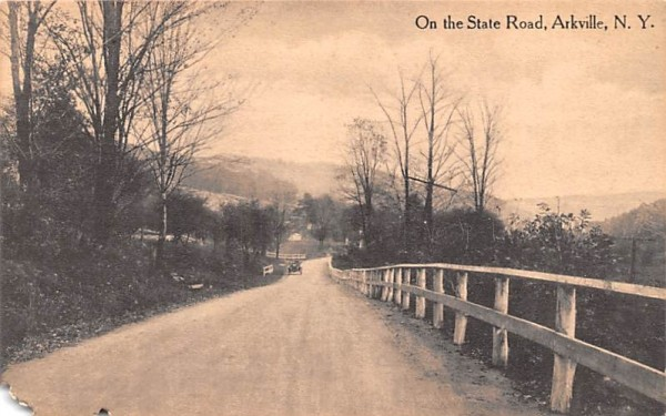 State Road Arkville, New York Postcard