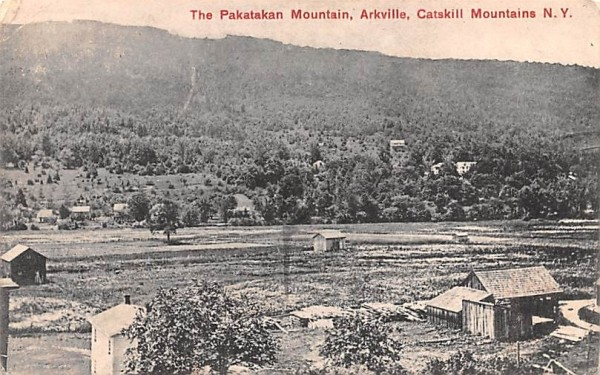 Pakatakan Mountains Arkville, New York Postcard