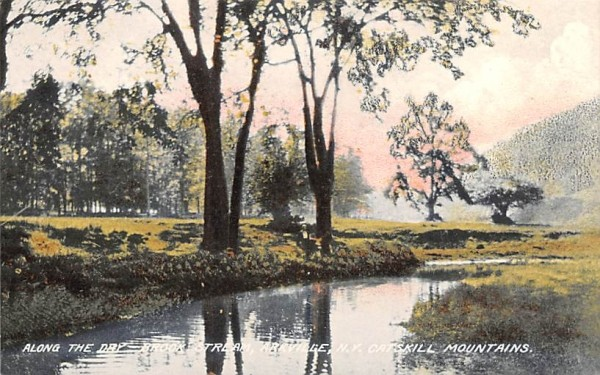 Dry Brook Stream Arkville, New York Postcard