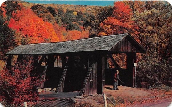 Catskill Mountain Vacationlands Arkville, New York Postcard
