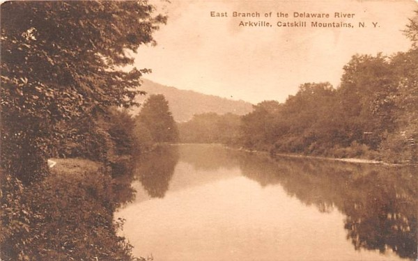 East Branch of the Delaware River Arkville, New York Postcard