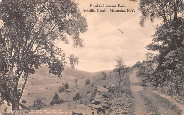 Road to Lensonia Park Arkville, New York Postcard