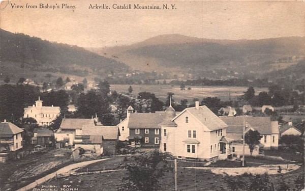 View from Bishop's Place Arkville, New York Postcard