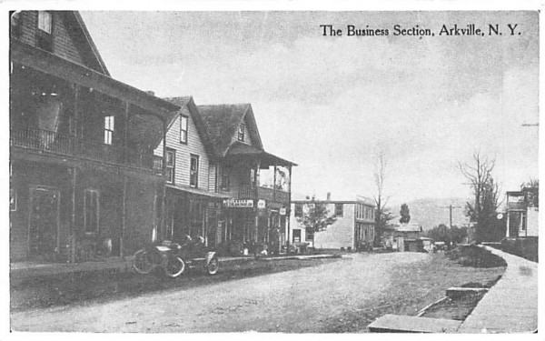 The Business Section Arkville, New York Postcard