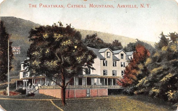 The Pakatakan Arkville, New York Postcard