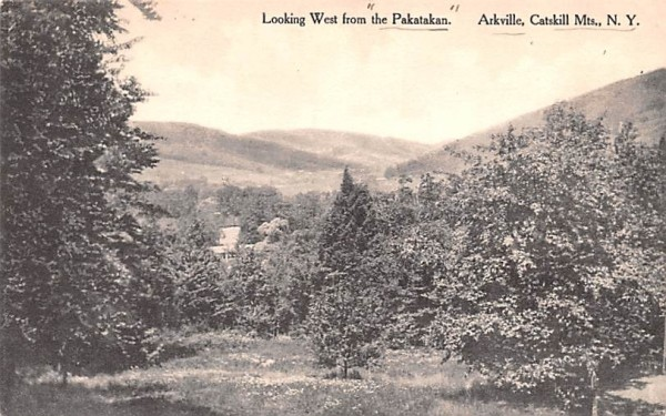 Looking West from Pakatakan Arkville, New York Postcard