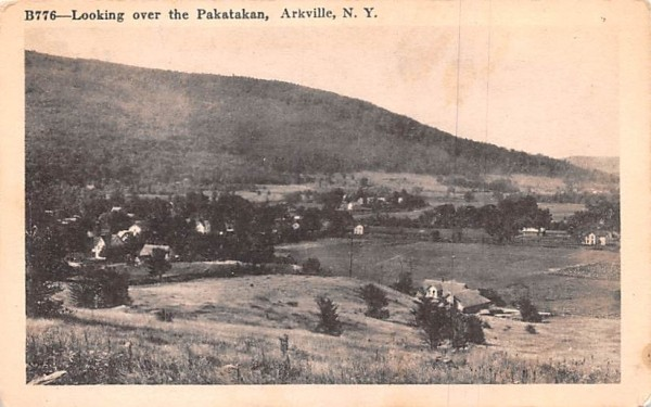 Looking over the Pakatakan Arkville, New York Postcard