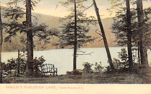 Gould's Purlough Lake Arkville, New York Postcard