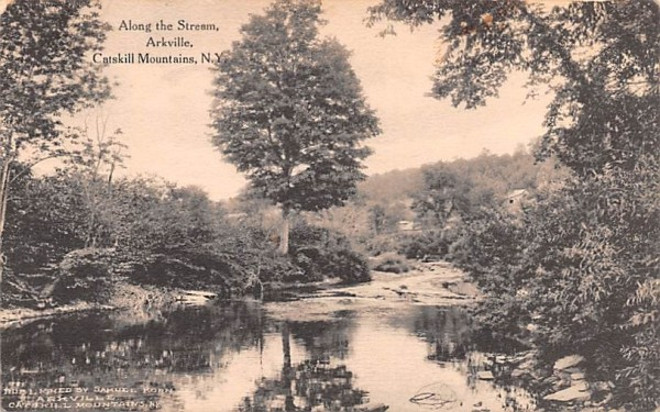 Along the Stream Arkville, New York Postcard