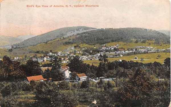 Bird's Eye View Arkville, New York Postcard