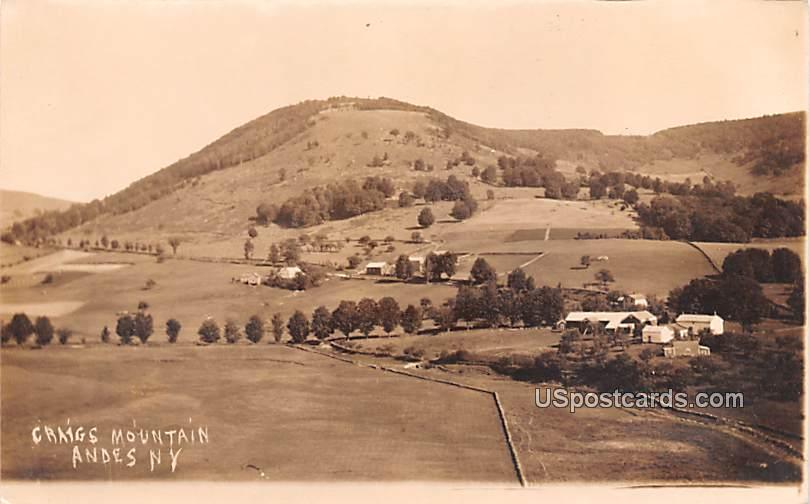 Craigs Mountain - Andes, New York NY Postcard