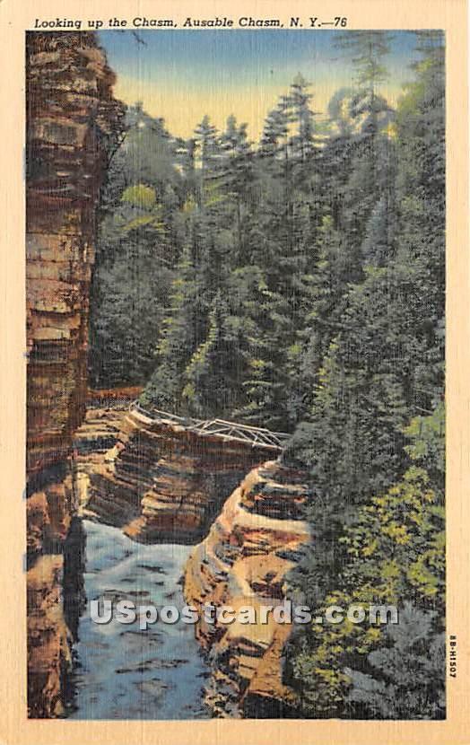 Chasm - Ausable Chasm, New York NY Postcard