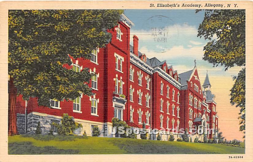St Elizabeth's Academy - Allegany, New York NY Postcard