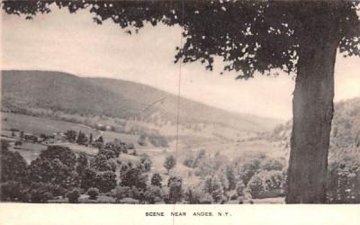 Bird's Eye View Andes, New York Postcard