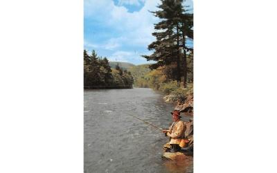 Catskill Mountain Vacationlands Andes, New York Postcard