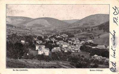 In the Catskills Andes, New York Postcard
