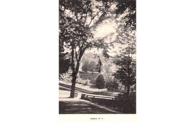 Park View Andes, New York Postcard