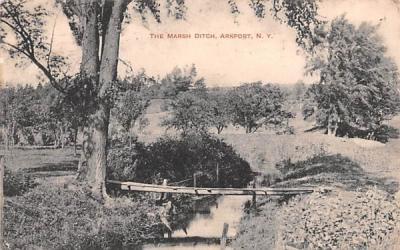 The Marsh Ditch Arkport, New York Postcard
