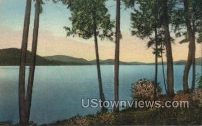 Lake View Lodge - Big Moose, New York NY Postcard