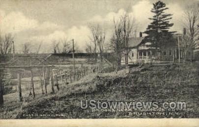 Bridges Near Brookside Cottage - Brushton, New York NY Postcard