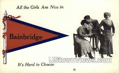 Bainbridge, New York, NY Postcard