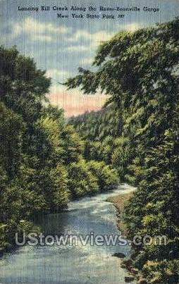 Lansing Kill Creek - Boonville Gorge, New York NY Postcard