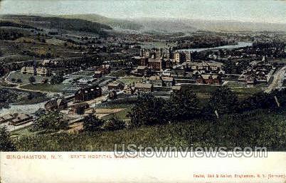 State Hospital Grounds - Binghamton, New York NY Postcard