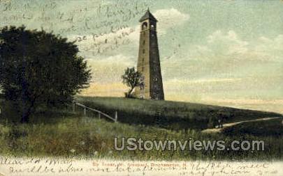 Ely Tower - Binghamton, New York NY Postcard