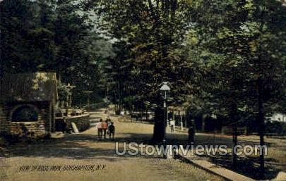 Ross Park - Binghamton, New York NY Postcard