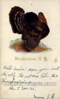 Binghamton, New York, NY Postcard