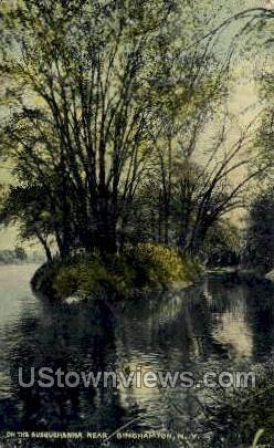 Susquehanna River - Binghamton, New York NY Postcard