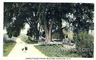Bloomingburg, New York, NY Postcard