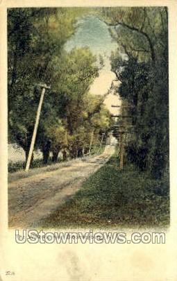 The Willows - Bloomingburg, New York NY Postcard