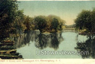 Shawangunk Kill - Bloomingburg, New York NY Postcard