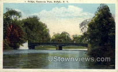 Cazenovia Park - Buffalo, New York NY Postcard