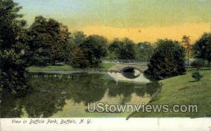 Buffalo Park - New York NY Postcard