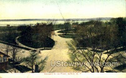 The Front - Buffalo, New York NY Postcard