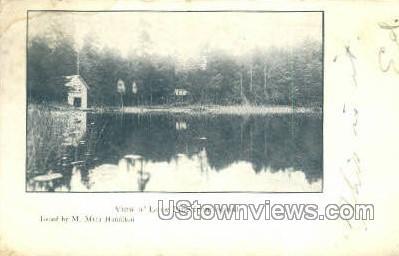 Lone Pine - Buffalo, New York NY Postcard