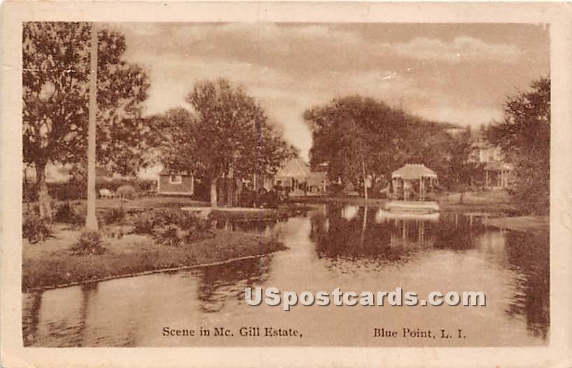 Mc Gill Estate - Blue Point, New York NY Postcard