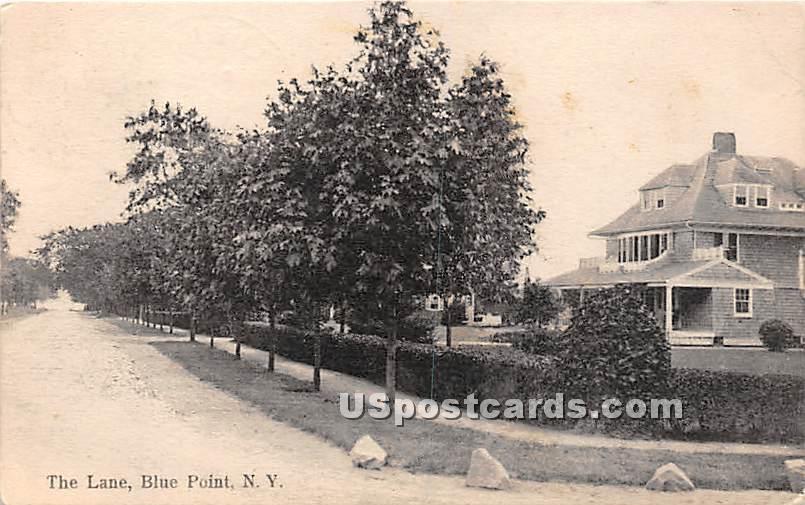 The Lane - Blue Point, New York NY Postcard