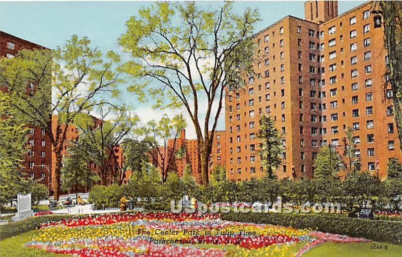 Center Park, Parkchester - Bronx, New York NY Postcard