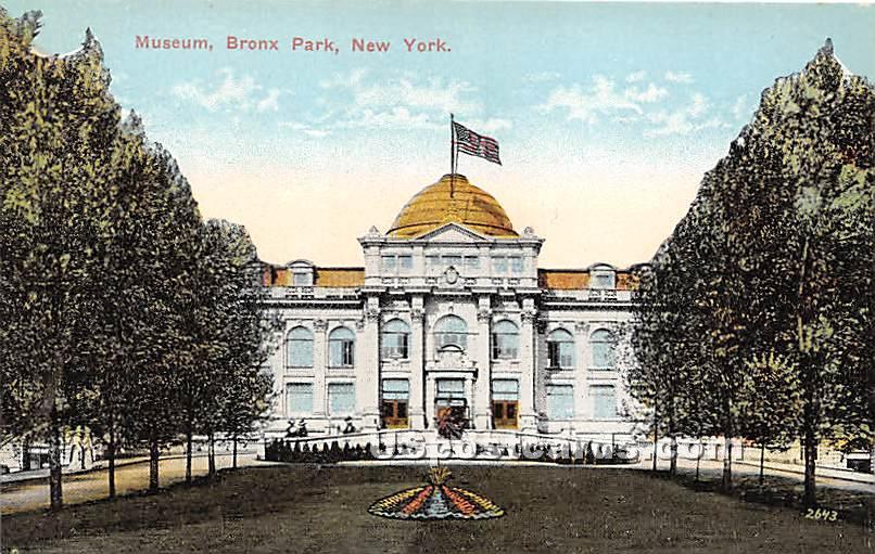 Muscum - Bronx Park, New York NY Postcard
