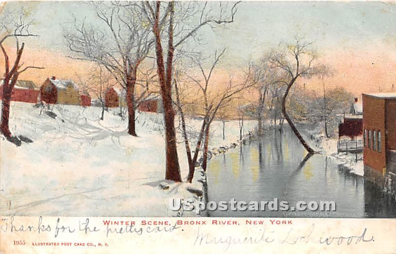 Bronx River - New York NY Postcard