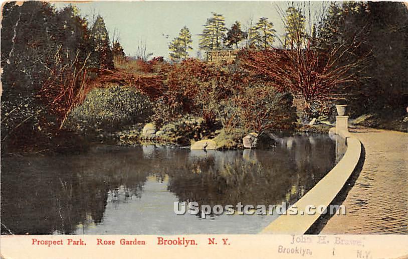 Prospect Park, Rose Garden - Brooklyn, New York NY Postcard