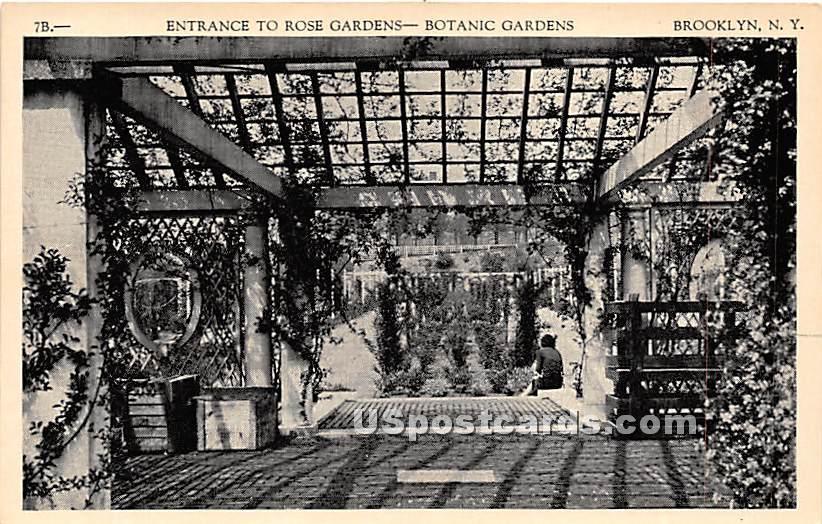 Rose Garden, Botanic Gardens - Brooklyn, New York NY Postcard